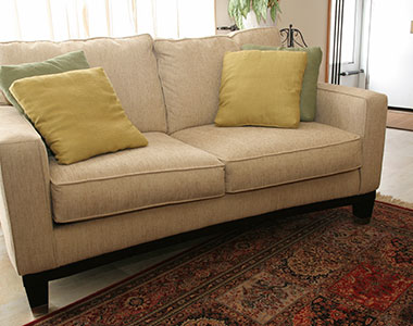 Premier Carpet Cleaning Carpet Cleaning In Colorado Springs