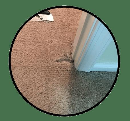 Carpet Repair - Premier Carpet Cleaning